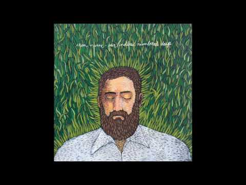Iron and Wine Each Coming Night