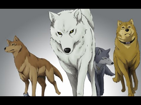 GR Anime Review: Wolf's Rain