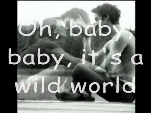 Mike Bailey Oh baby, baby it's a wild world (аккорды)